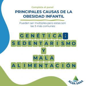 La mala alimentación, el sedentarismo y la genética son las causas principales de la obesidad